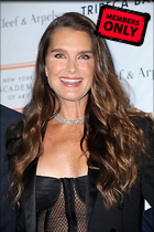 Celebrity Photo: Brooke Shields 2400x3600   2.1 mb Viewed 1 time @BestEyeCandy.com Added 175 days ago