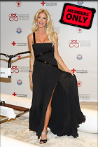 Celebrity Photo: Victoria Silvstedt 2064x3103   1.4 mb Viewed 1 time @BestEyeCandy.com Added 14 days ago