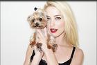Celebrity Photo: Amber Heard 1280x855   552 kb Viewed 24 times @BestEyeCandy.com Added 91 days ago