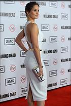 Celebrity Photo: Sarah Wayne Callies 2014x3000   510 kb Viewed 50 times @BestEyeCandy.com Added 211 days ago