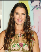Celebrity Photo: Brooke Shields 1200x1505   307 kb Viewed 85 times @BestEyeCandy.com Added 64 days ago