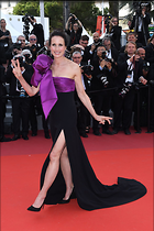 Celebrity Photo: Andie MacDowell 1200x1800   239 kb Viewed 155 times @BestEyeCandy.com Added 198 days ago