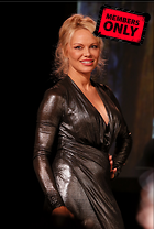 Celebrity Photo: Pamela Anderson 2532x3756   3.2 mb Viewed 2 times @BestEyeCandy.com Added 31 days ago