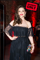 Celebrity Photo: Hayley Atwell 2330x3500   1.4 mb Viewed 4 times @BestEyeCandy.com Added 157 days ago
