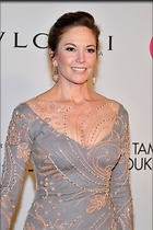 Celebrity Photo: Diane Lane 683x1024   223 kb Viewed 37 times @BestEyeCandy.com Added 79 days ago
