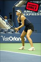 Celebrity Photo: Maria Sharapova 2000x3000   2.5 mb Viewed 0 times @BestEyeCandy.com Added 41 hours ago