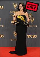Celebrity Photo: Julia Louis Dreyfus 3000x4257   1.7 mb Viewed 0 times @BestEyeCandy.com Added 184 days ago