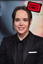 Celebrity Photo: Ellen Page 3280x4928   1.6 mb Viewed 1 time @BestEyeCandy.com Added 319 days ago