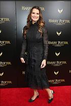 Celebrity Photo: Brooke Shields 1200x1800   234 kb Viewed 66 times @BestEyeCandy.com Added 147 days ago