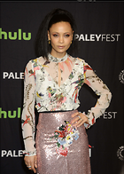 Celebrity Photo: Thandie Newton 3000x4210   1,032 kb Viewed 35 times @BestEyeCandy.com Added 96 days ago