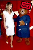 Celebrity Photo: Elizabeth Hurley 2580x3870   2.0 mb Viewed 1 time @BestEyeCandy.com Added 12 days ago