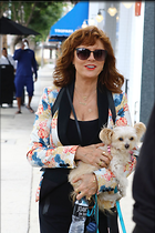 Celebrity Photo: Susan Sarandon 1200x1800   215 kb Viewed 35 times @BestEyeCandy.com Added 44 days ago