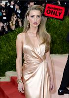 Celebrity Photo: Amber Heard 2473x3500   4.1 mb Viewed 2 times @BestEyeCandy.com Added 15 days ago