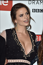 Celebrity Photo: Hayley Atwell 1200x1800   257 kb Viewed 43 times @BestEyeCandy.com Added 94 days ago