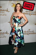 Celebrity Photo: Kimberly Williams Paisley 2373x3600   1.5 mb Viewed 1 time @BestEyeCandy.com Added 36 days ago