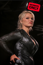 Celebrity Photo: Pamela Anderson 1832x2800   2.4 mb Viewed 2 times @BestEyeCandy.com Added 31 days ago