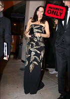 Celebrity Photo: Julia Louis Dreyfus 2636x3741   1.4 mb Viewed 0 times @BestEyeCandy.com Added 51 days ago