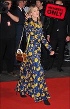 Celebrity Photo: Rosamund Pike 2564x3991   1.8 mb Viewed 1 time @BestEyeCandy.com Added 6 days ago
