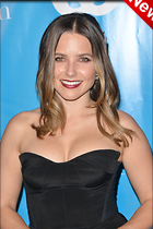 Celebrity Photo: Sophia Bush 2100x3150   809 kb Viewed 24 times @BestEyeCandy.com Added 6 days ago