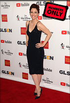 Celebrity Photo: Chyler Leigh 2443x3600   3.8 mb Viewed 1 time @BestEyeCandy.com Added 44 days ago