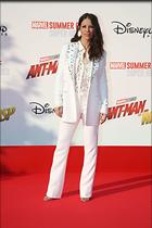 Celebrity Photo: Evangeline Lilly 1200x1800   150 kb Viewed 8 times @BestEyeCandy.com Added 63 days ago