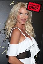 Celebrity Photo: Victoria Silvstedt 3211x4819   1.8 mb Viewed 1 time @BestEyeCandy.com Added 50 days ago