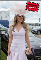 Celebrity Photo: Elizabeth Hurley 2476x3614   1.6 mb Viewed 0 times @BestEyeCandy.com Added 6 days ago