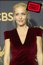 Celebrity Photo: Gillian Anderson 2400x3600   3.2 mb Viewed 1 time @BestEyeCandy.com Added 227 days ago
