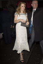 Celebrity Photo: Amy Adams 20 Photos Photoset #355254 @BestEyeCandy.com Added 247 days ago