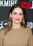 Celebrity Photo: Amanda Peet 2570x3600   1.5 mb Viewed 2 times @BestEyeCandy.com Added 312 days ago