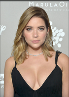 Celebrity Photo: Ashley Benson 1134x1600   226 kb Viewed 31 times @BestEyeCandy.com Added 106 days ago