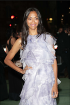 Celebrity Photo: Zoe Saldana 1200x1800   204 kb Viewed 31 times @BestEyeCandy.com Added 66 days ago