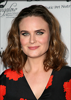 Celebrity Photo: Emily Deschanel 2569x3600   680 kb Viewed 14 times @BestEyeCandy.com Added 63 days ago
