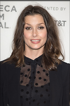 Celebrity Photo: Bridget Moynahan 1200x1803   264 kb Viewed 259 times @BestEyeCandy.com Added 695 days ago
