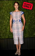 Celebrity Photo: Cobie Smulders 3388x5367   4.4 mb Viewed 4 times @BestEyeCandy.com Added 56 days ago