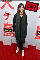 Celebrity Photo: Gina Gershon 4016x6016   1.9 mb Viewed 0 times @BestEyeCandy.com Added 99 days ago