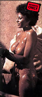 Celebrity Photo: Pam Grier 241x550   24 kb Viewed 34 times @BestEyeCandy.com Added 3050 days ago
