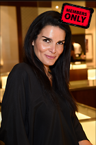 Celebrity Photo: Angie Harmon 2268x3413   1.8 mb Viewed 13 times @BestEyeCandy.com Added 985 days ago