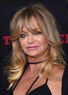 Celebrity Photo: Goldie Hawn 2579x3600   1.1 mb Viewed 239 times @BestEyeCandy.com Added 754 days ago