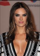 Celebrity Photo: Alessandra Ambrosio 2000x2800   896 kb Viewed 215 times @BestEyeCandy.com Added 1054 days ago