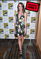 Celebrity Photo: Amy Acker 2168x3152   2.5 mb Viewed 11 times @BestEyeCandy.com Added 755 days ago