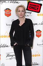 Celebrity Photo: Gillian Anderson 2790x4255   1.8 mb Viewed 3 times @BestEyeCandy.com Added 796 days ago