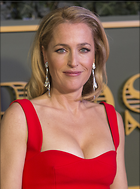 Celebrity Photo: Gillian Anderson 1790x2417   1.2 mb Viewed 333 times @BestEyeCandy.com Added 666 days ago