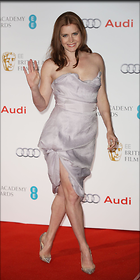 Celebrity Photo: Amy Adams 1250x2500   180 kb Viewed 4.508 times @BestEyeCandy.com Added 847 days ago