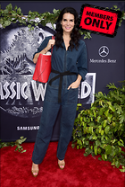 Celebrity Photo: Angie Harmon 2283x3396   6.1 mb Viewed 7 times @BestEyeCandy.com Added 620 days ago