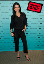 Celebrity Photo: Angie Harmon 2932x4314   3.3 mb Viewed 14 times @BestEyeCandy.com Added 624 days ago