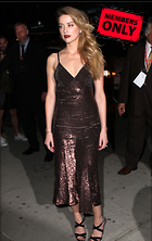 Celebrity Photo: Amber Heard 3276x5184   2.0 mb Viewed 8 times @BestEyeCandy.com Added 1039 days ago