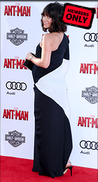 Celebrity Photo: Evangeline Lilly 2445x4519   2.4 mb Viewed 4 times @BestEyeCandy.com Added 934 days ago