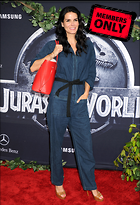Celebrity Photo: Angie Harmon 2850x4169   2.0 mb Viewed 9 times @BestEyeCandy.com Added 983 days ago