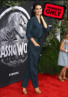 Celebrity Photo: Angie Harmon 2080x2972   1.6 mb Viewed 9 times @BestEyeCandy.com Added 983 days ago
